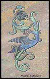Bird of Paridise on marble